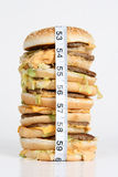 Hamburguer obeso Imagens de Stock Royalty Free