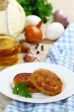 Hamburgueres e ingredientes do repolho para cozinhar imagens de stock royalty free