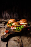 Hamburguesa casera con cerdo y verduras imagen de archivo