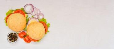 Hamburguesa con queso, carne, tomates y cebollas e hierbas Imagen de archivo libre de regalías