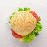 Hamburguesa con queso, carne y cebollas verdes en fondo de madera Fotos de archivo libres de regalías