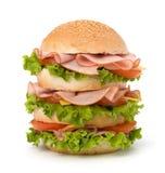 Hamburguesa de Junk Food imágenes de archivo libres de regalías