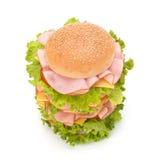 Hamburguesa de Junk Food Imagen de archivo
