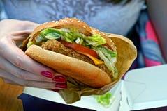 Hamburguesa de la ensalada de pollo de tomates y del queso a disposición Imágenes de archivo libres de regalías