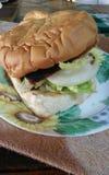 Hamburguesa de pollo Imágenes de archivo libres de regalías