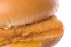 Hamburguesa del filete de pescados aislada Imagen de archivo libre de regalías