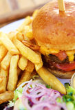 Hamburguesa del queso con las fritadas Imagenes de archivo