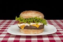 Hamburguesa hecha en casa Fotografía de archivo
