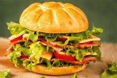 Hamburguesa hecha en casa con la carne y las verduras Imagen de archivo