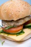 Hamburguesa hecha en casa con la chuleta y las verduras de la carne de vaca Imágenes de archivo libres de regalías