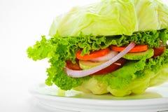 Hamburguesa vegetariana imagen de archivo libre de regalías