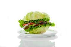 Hamburguesa vegetariana foto de archivo libre de regalías