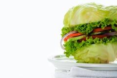 Hamburguesa vegetariana imagen de archivo