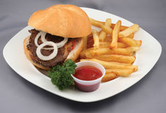 Hamburguesa y fritadas combinadas Fotos de archivo
