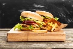 Hamburguesa y fritadas deliciosas Fotografía de archivo