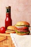 Hamburguesa y salsa de tomate Imagen de archivo libre de regalías