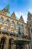 Hamburski urząd miasta Fotografia Stock