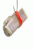 Hameçon amorcé avec de l'argent Photographie stock libre de droits