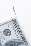 Hameçon et dollar Photographie stock libre de droits