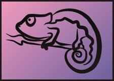 Hameleon do ¡ de Ð Imagens de Stock