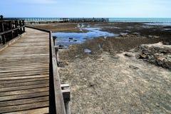 Hamelinpool Marine Nature Reserve royalty-vrije stock fotografie