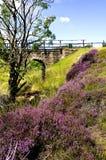 Hamer Bridge, North York Moors, England Stock Image