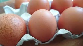 Hamer een ei stock footage