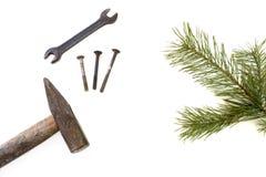 Hamer en pijnboom geïsoleerde tak Stock Fotografie