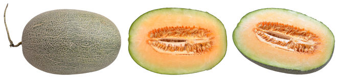 hami melon Royalty Free Stock Photos