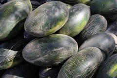 Hami melon (a variety of muskmelon) Royalty Free Stock Photo