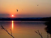 Hamilton Bay. Sunset in Hamilton Bay Lake Ontario Royalty Free Stock Photography