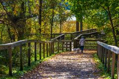 Hamilton, CANADA - October 16, 2018: colorful sunny autumn full royalty free stock photography