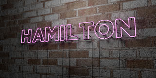 HAMILTON - Glowing Neon Sign on stonework wall - 3D rendered royalty free stock illustration Royalty Free Stock Photos