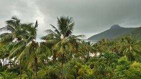 Hamilton Island, Queensland Stockbilder