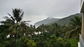 Hamilton Island, Queensland Royalty Free Stock Photography
