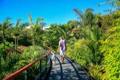 HAMILTON, NZ - 25 FEBBRAIO 2015: Giardino tropicale in Hamilton Gardens Fotografie Stock