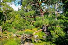 HAMILTON, NZ - 25. FEBRUAR 2015: Japanischer Garten der Betrachtung in Hamilton Gardens Lizenzfreie Stockfotos