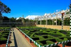HAMILTON NZ - FEBRUARI 25, 2015: Japanträdgård av begrundande i Hamilton Gardens arkivfoto