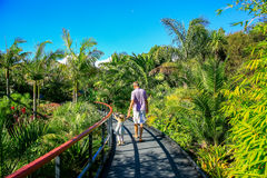 HAMILTON, NZ - FEBRUARY 25, 2015: Tropical garden in Hamilton Gardens stock photos