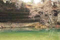Hamilton Pool Preserve nära Austin Texas arkivbild