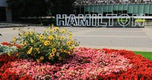Hamilton tecken på stadshuset, Kanada med blommor 4K stock video
