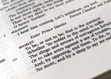 Hamlet Lizenzfreies Stockbild