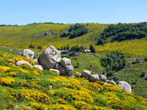 Hamlet in the moor in the Cevennes Mountains, France Stock Photos