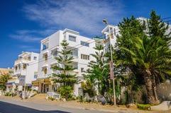 HAMMAMET,突尼斯- 2014年10月:有枣椰子、树和白色大厦的街道2014年10月6日 免版税图库摄影