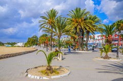 HAMMAMET,突尼斯- 2014年10月:有枣椰子、树和白色大厦的街道2014年10月6日 库存照片