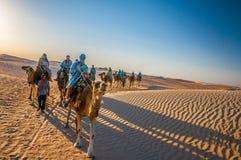 HAMMAMET TUNISIEN - Oktober 2014: Kamelhusvagn som går i den sahara öknen på Oktober 7, 2014 Arkivbilder
