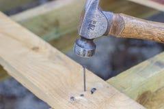 Hammaren gör poäng spikar i ett träbräde Konstruktion av hus royaltyfri fotografi