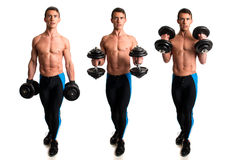 Hammer Curl Exercise Stock Photos