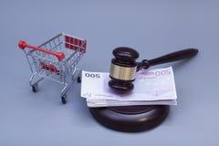 Hammer des Richters, des Handwagens und des Eurogeldes auf Weiß Lizenzfreie Stockfotografie