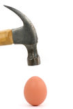 Hammer and egg Stock Image